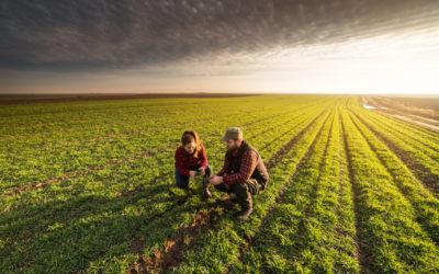 Podcast : une agriculture multiple, une banque unique